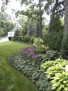[low maintenance plants – The background is Spruce and Arborvitae. The middle layer is Viburnum, Hydrangea and Ligularia. The foreground is Astilbe, Hosta and Pachysandra.] … Great ideas for the Shade Garden [low maintenance plants – The Garden Shrubs, Shade Garden, Lawn And Garden, Hosta Gardens, Patio Plants, Easy Garden, Herb Garden, Garden Paths, Chicago Landscape
