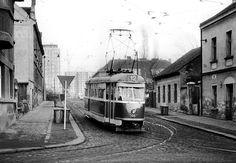 Tramvaj T1 Buses, Street View, Busses