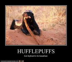Hufflepuffs...eat Slytherins for breakfast...(no offense to my Slytherin friends :)