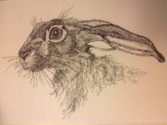 It's a hare!!