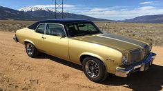 1974 Oldsmobile Omega 350 4bbl/4sp Auto/3.73 Positraction
