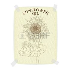 sunflower+oil%3A+Sunflower.+Vintage+label+Sunflower+oil.+Textured+paper+with+a+beautiful+drawing+of+a+sunflower.+Design+for+label%2C+cards%2C+advertising%2C+postcards.+Sepia%2C+a+brown+colour.+Vector+illustration.+%D0%98%D0%BB%D0%BB%D1%8E%D1%81%D1%82%D1%80%D0%B0%D1%86%D0%B8%D1%8F