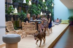 Barcelona-based startup, Typeform, was growing by exponential bounds so Lagranja Design created a new, non-conventional office space complete with plants.
