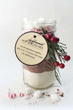 Make this Hot Cocoa Mix in a Jar for yourself or to give to family and friends this holiday season. Add peppermint to make it Peppermint Hot Cocoa Mix.