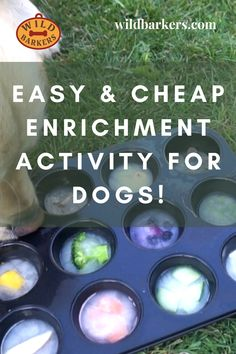 Frozen Muffin Tin Enrichment Activity For Dogs: Easy and Cheap DIY Canine Games Dog Treat Toys, Diy Dog Toys, Best Dog Toys, Best Dogs, Diy Puzzle Toys For Dogs, Baby Toys, Homemade Dog Toys, Dog Enrichment, Enrichment Activities