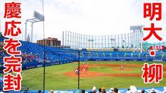 東京六大学野球 明大の柳裕也 20勝 うれしい