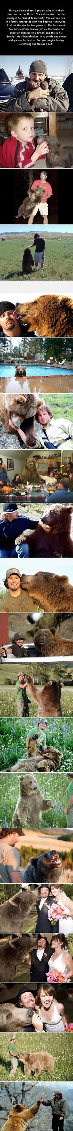 The story of a man and his bear... I want one.