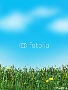 """Download the royalty-free photo """"Green Grass with dandelion flower and blue sky and clouds background. Digital illustration, poster"""" created by sofiartmedia at the lowest price on Fotolia.com. Browse our cheap image bank online to find the perfect stock photo for your marketing projects!"""