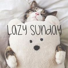 Have A Lazy Sunday sunday sunday quotes sunday images sunday pictures sunday quotes and sayings Happy Sunday, Good Morning Sunday Images, Sunday Pictures, Hello Sunday, Happy Weekend, Sunday Wishes, Hello Weekend, Morning Pictures, Lazy Sunday Quotes
