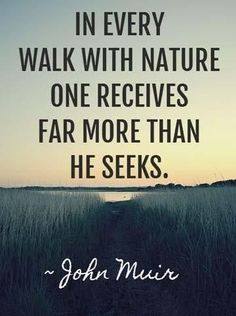 """in every walk with nature one receives far more than he seeks. ~ John Muir I like this quote but would amend it to say """"In every walk with nature, people receive far more than they seek. Citation Nature, Image Citation, Great Quotes, Quotes To Live By, Inspirational Quotes, Quotes Quotes, Monday Quotes, Time Quotes, Motivational Images"""