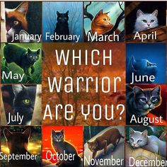 Which warrior are you? These cats are from dawn of the clans so you have to have the warriors ultimate guide... Maybe not... I hope you know who these cats are