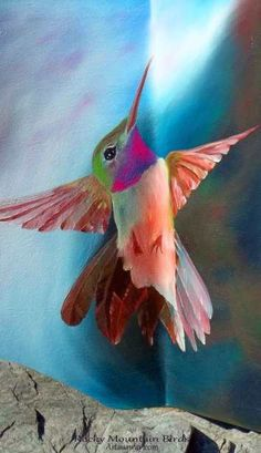 Visit the post for more. Small Birds, Little Birds, Pretty Birds, Beautiful Birds, Geometric Owl, Exotic Pets, Exotic Animals, Owl Pet, Rainbow Art