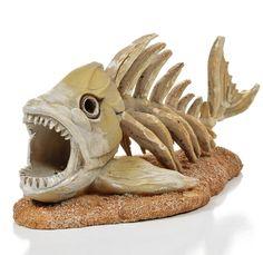 Aquarium decoratie kopen? Denk eerst na over de inrichting, stijl en het type…