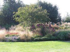 Een heerlijke combinatie van vaste planten en siergrassen in dit fraaie herfstbeeld.