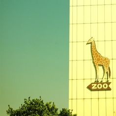 Zoo (with thanks to original Pinner)