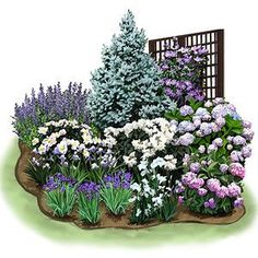 This informal mixed garden bed features drought-tolerant trees, evergreen shrubs, perennials, and annuals.