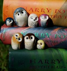 Harry Potter inspired owls! Each seems to have his own personality. :)
