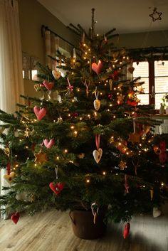 U nás na kopečku: ... vánoční stromeček na kopečku ...