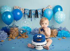 Cake Smash, Cookie Monster Cake Smash