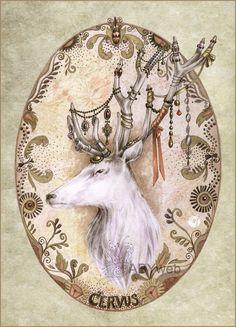 cerf dessin blanc illustration legende conte
