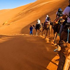 Morocco Lifetime Tours : Morocco Tours, Private Desert Tours From Marrakech & Excursions From Marrakech Cedar Forest, Desert Tour, Movie Producers, Desert Dream, Before Sunrise, Make Pictures, Natural Scenery, The Dunes, Fes