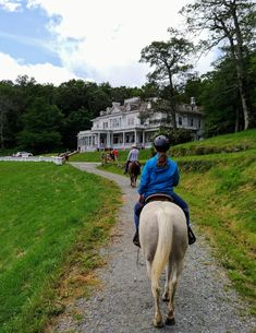 Saddle up for a ride in the Boone Area. The Blue Ridge Mountains host a wide variety of stables and trails, as well as riding programs. Blue Ridge Parkway, Blue Ridge Mountains, Outdoor Recreation, Most Visited, Horseback Riding, Stables, North Carolina, Equestrian, Trip Advisor