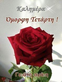 Good Morning Quotes, Rose, Greek Language, Wednesday, Learning, Decor, Greek, Inspiring Sayings, Pink