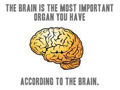 Image result for neuro meme
