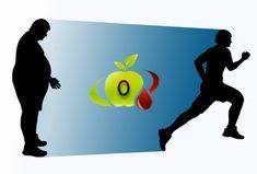 Gruppo Sanguigno 0. Come mantenersi sani con l'alimentazione