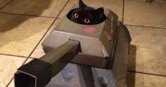 This Company Makes Cardboard Tanks, Planes And Houses For Cats, And Your Master Needs Them Right Meow! | Bored Panda