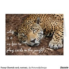 Funny Cheetah card, customize for any occasion; front: why is it dangerous to play cards in the jungle inside: too many cheetahs! Funny Animal Pictures, Funny Animals, Cute Animals, Funny Greeting Cards, Custom Greeting Cards, Funny Retirement Cards, Cheetahs, Big Cats, Funny Cute