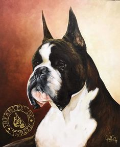 Boxer Dogs, Boxers, Cool Live Wallpapers, Cute Little Animals, Bulldogs, Loki, Boston Terrier, Dog Breeds, Pitbulls