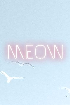 Neon signage, Taylor Swift 1989 inspired>> makes me want to make a cats board and use this as the cover picture haha
