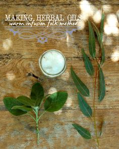 Making Herbal Oils : Warm Infusion Folk Method Worts + Cunning Apothecary