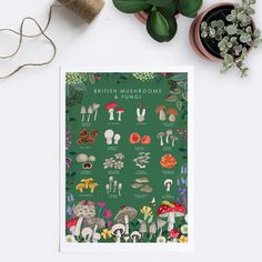 'British Mushrooms and Fungi' Illustration Prin... - Folksy Botanical Wall Art, Botanical Prints, English Gifts, Woodland Art, Wall Art Prints, Poster Prints, Mushroom Fungi, Botanical Illustration, Beautiful Artwork