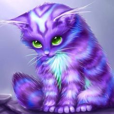Little kitty see other animation variety board click… Baby Kittens, Cats And Kittens, Crazy Cat Lady, Crazy Cats, I Love Cats, Cute Cats, Baby Animals, Cute Animals, Purple Cat