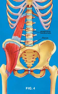 The Psoas Psubstitutes, Part 4 || Massage Therapy Articles