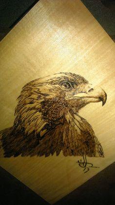 """""""Golden Eagle"""" woodburning, wood burning, pyroggraphy"""