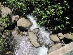 Iao, Neelde: Maui, Hawii, on the grounds of the Iao area.