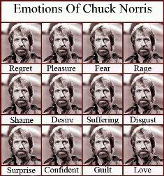 chuck norris famous sayings | other famous funny chuck norris celebrity jokes and humor quotations