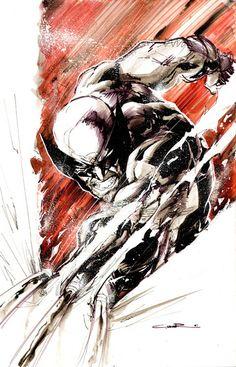 Wolverine by Yildiray Cinar