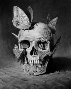 butterflies on skull drawing