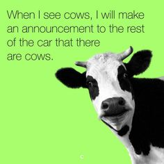 We really good lol so True Funny Pictures, shows its funny Pictures in the social networks. We realize the importance of the laughing at problems, as these lol Cow Quotes, Funny Quotes, Funny Memes, Hilarious, Farm Quotes, Animal Quotes, Lol, Great Memes, I Love To Laugh