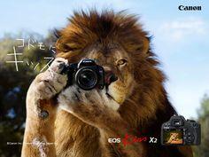 j Canon - EOS Kiss X2 j