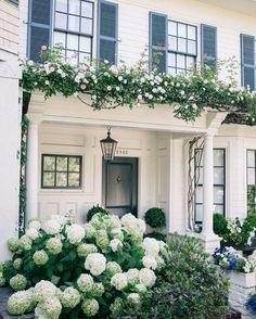 white house + hydrangeas