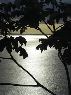 كن # sunset# بحر # slma76 Pictures, Paintings, Clip Art