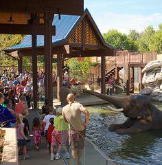 Toyota Elephant Passage | Denver Zoo
