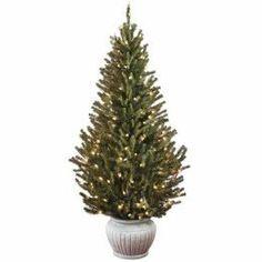 Living Christmas Trees : TreeHugger