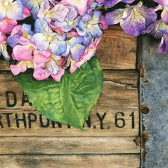Realistic 6x6 hydrangea floral watercolor painting (giclee print reproduction pink purple square art rustic country decor weathered wood) by ASheaDesignLab on Etsy
