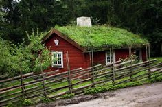 A Swedish summer cottage – what many Danes own.
